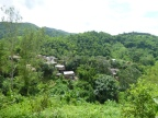 Thaïlande – Trek dans la jungle au Nord de Chang Rai