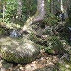 Vercors -L'Histoire du Moulin – Dimanche 13/10